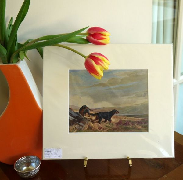 Gordon Setters 1950's print by Ward Binks -Set WB3